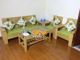 Chạy theo xu hướng với bộ đệm ghế xanh lá tại Thái Thịnh
