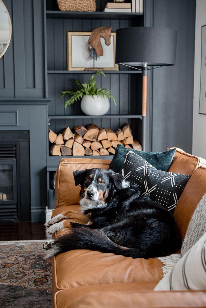 Sofa màu da bò tại sao nhiều người lựa chọn đến như vậy
